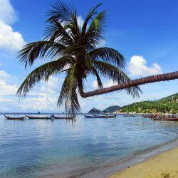 Flitterwochen Thailand günstig