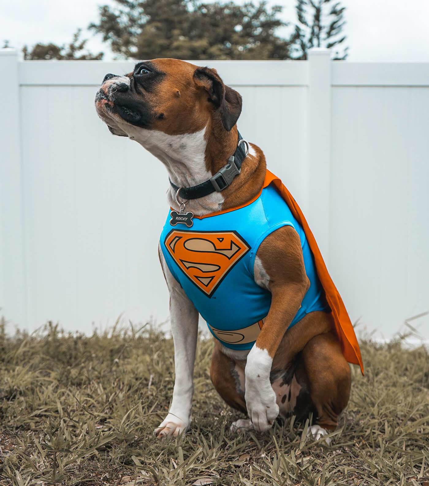 Mottoparty Superhelden