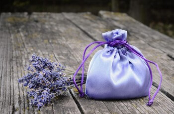Gastgeschenk Lavendel