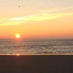 Heiratsantrag Sonnenuntergang