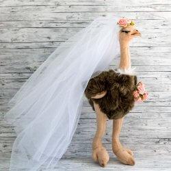 Hochzeitsüberraschungen Standesamt